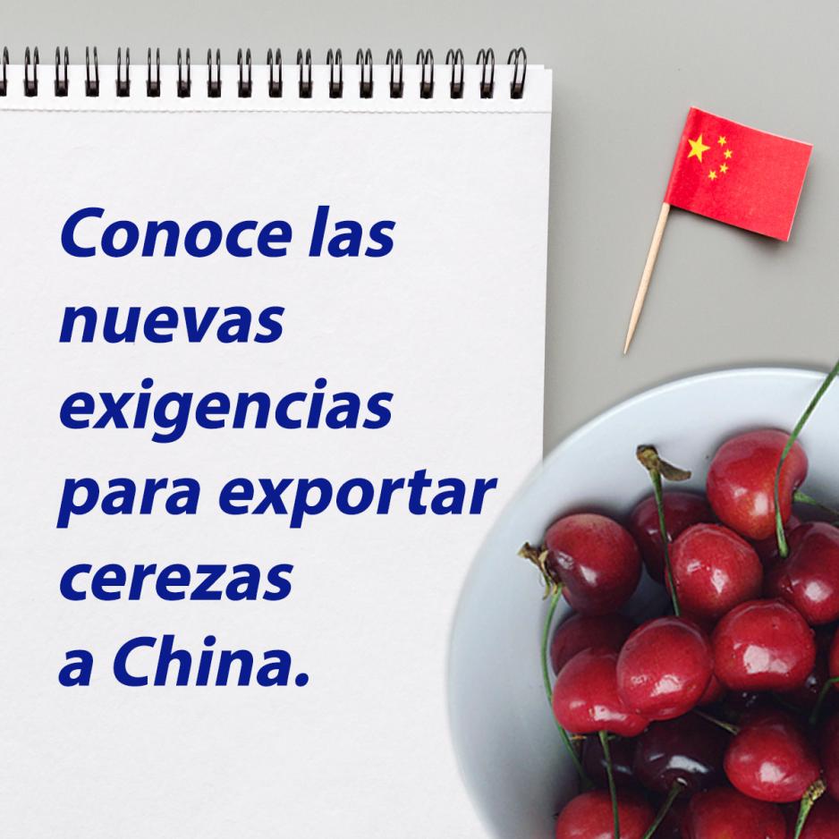 Anuncian nuevas exigencias para exportar cerezas a China